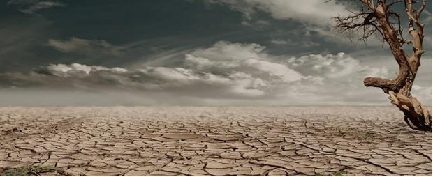 Jornada Emergencia climática y migraciones